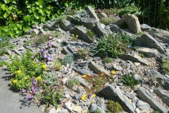 Crevice tuin