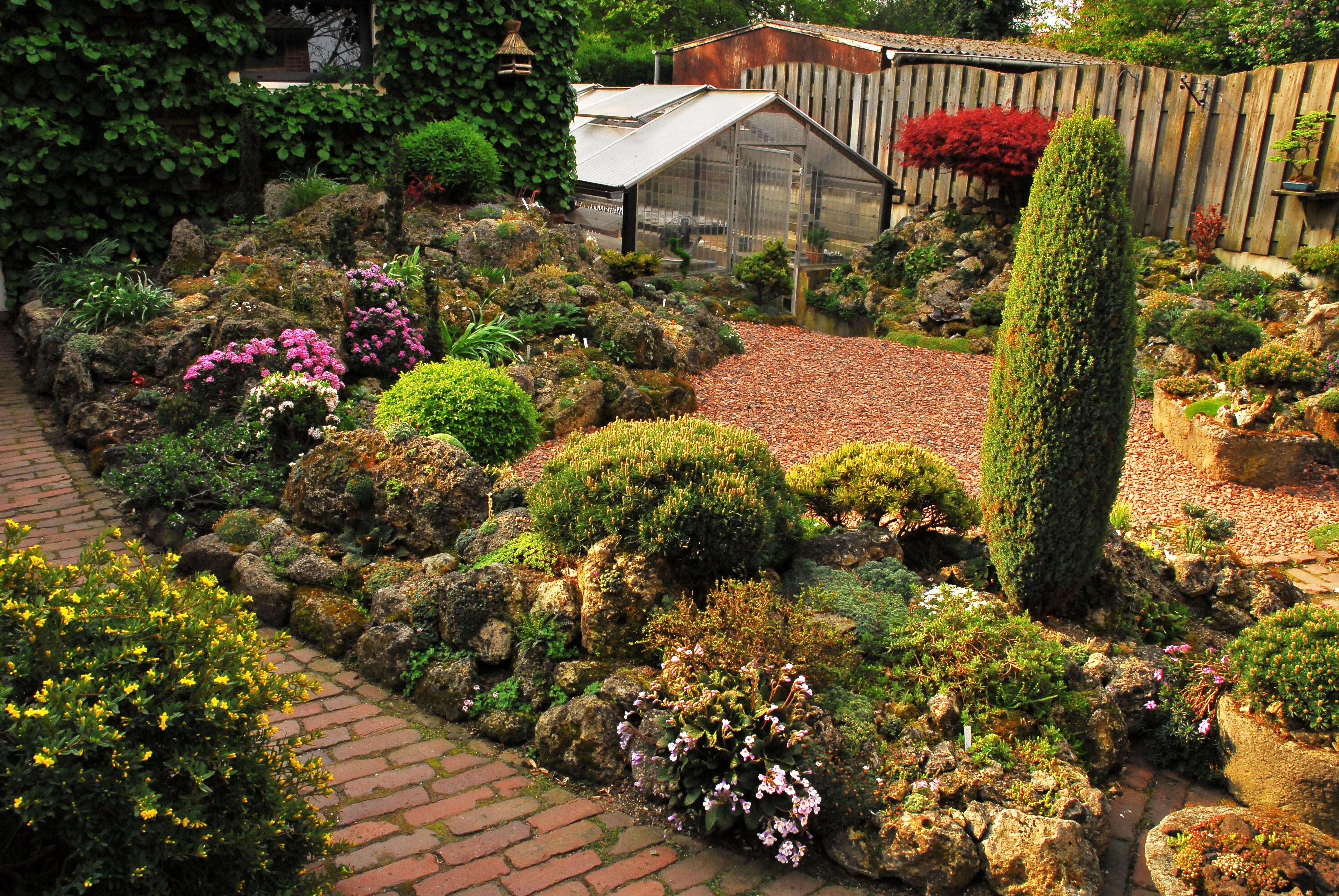 Onze vereniging vlaamse rotsplanten vereniging - Amenager een rotstuin ...